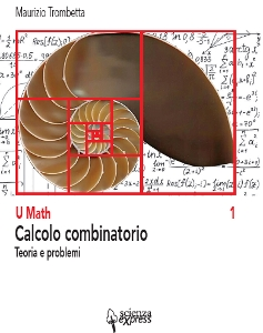 calcolo-combinatorio-237×300